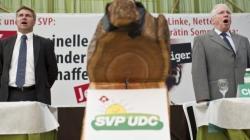 Zur Zeit hilft auch singen nichts: SVP-Präsident Brunner mit seinem Vize Blocher.